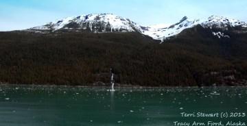 tracy-arm-fjord-copy