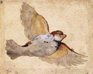 Giovanni_Da_Udine_-_Study_of_a_Flying_Sparrow_-_WGA09431