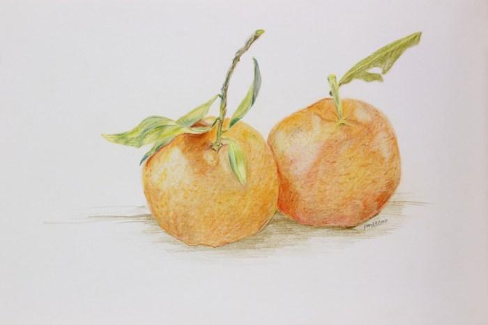 mandarins-25-e1395773294954