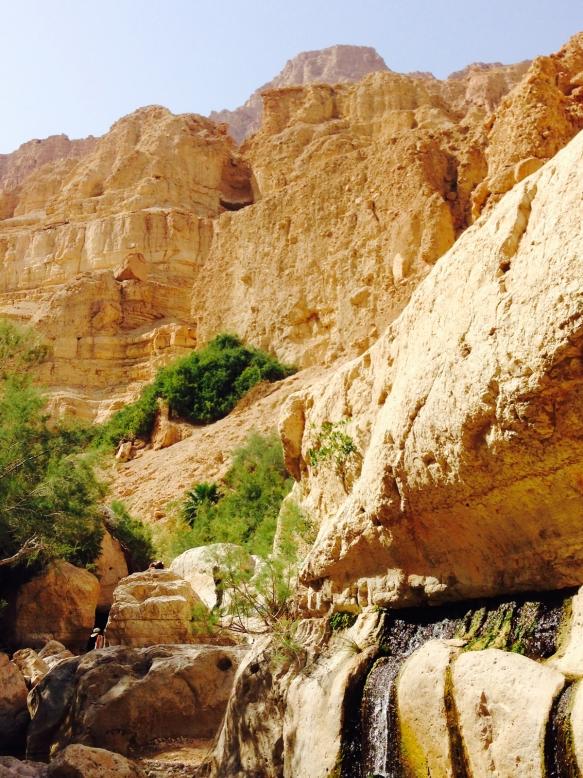 En Gedi — Wadi David Photograph ©2015