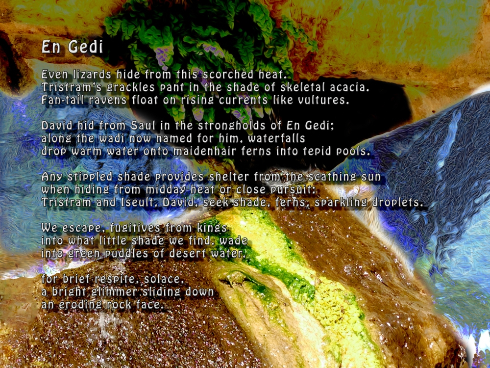 En Gedi Digital Art / Poem ©2014-2016 Michael Dickel