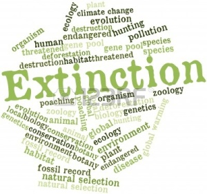 15829985-abstract-word-cloud-for-extinction-with-related-tags-and-terms