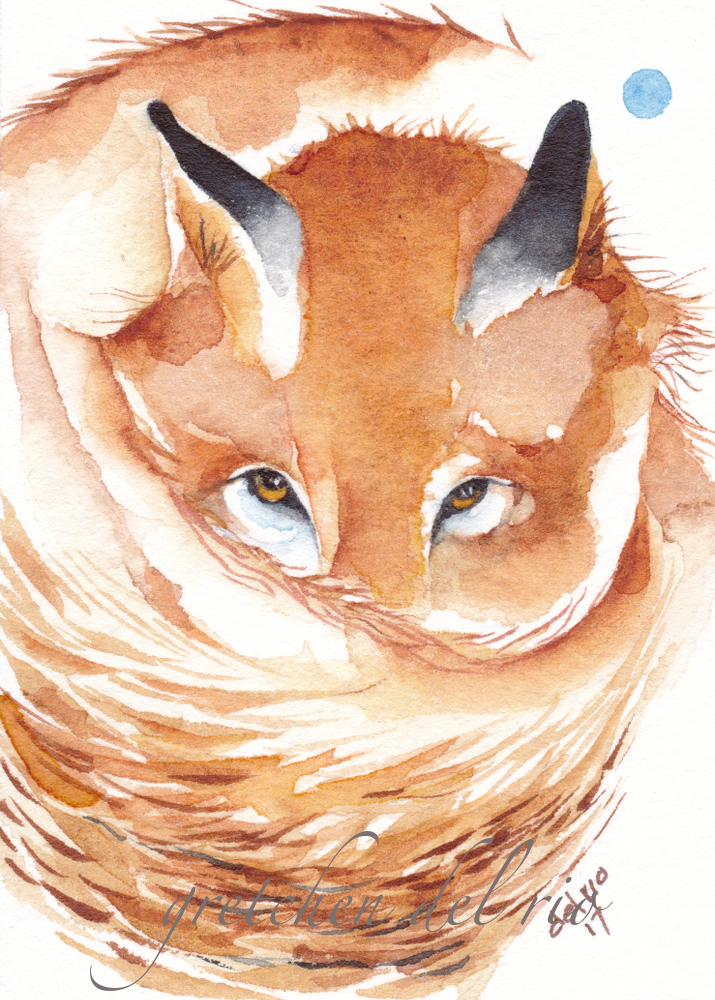 watercolor aceo 2/2017