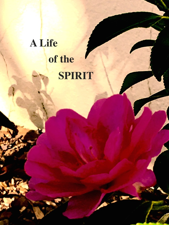 The BeZine, December 2017, Vol. 4, Issue 3, A Life of the Spirit