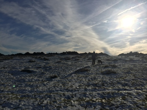 Arctic Desert at the Trig
