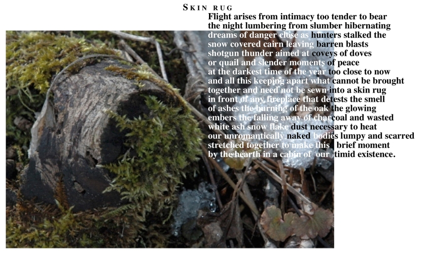 Skin Rug poem graphic