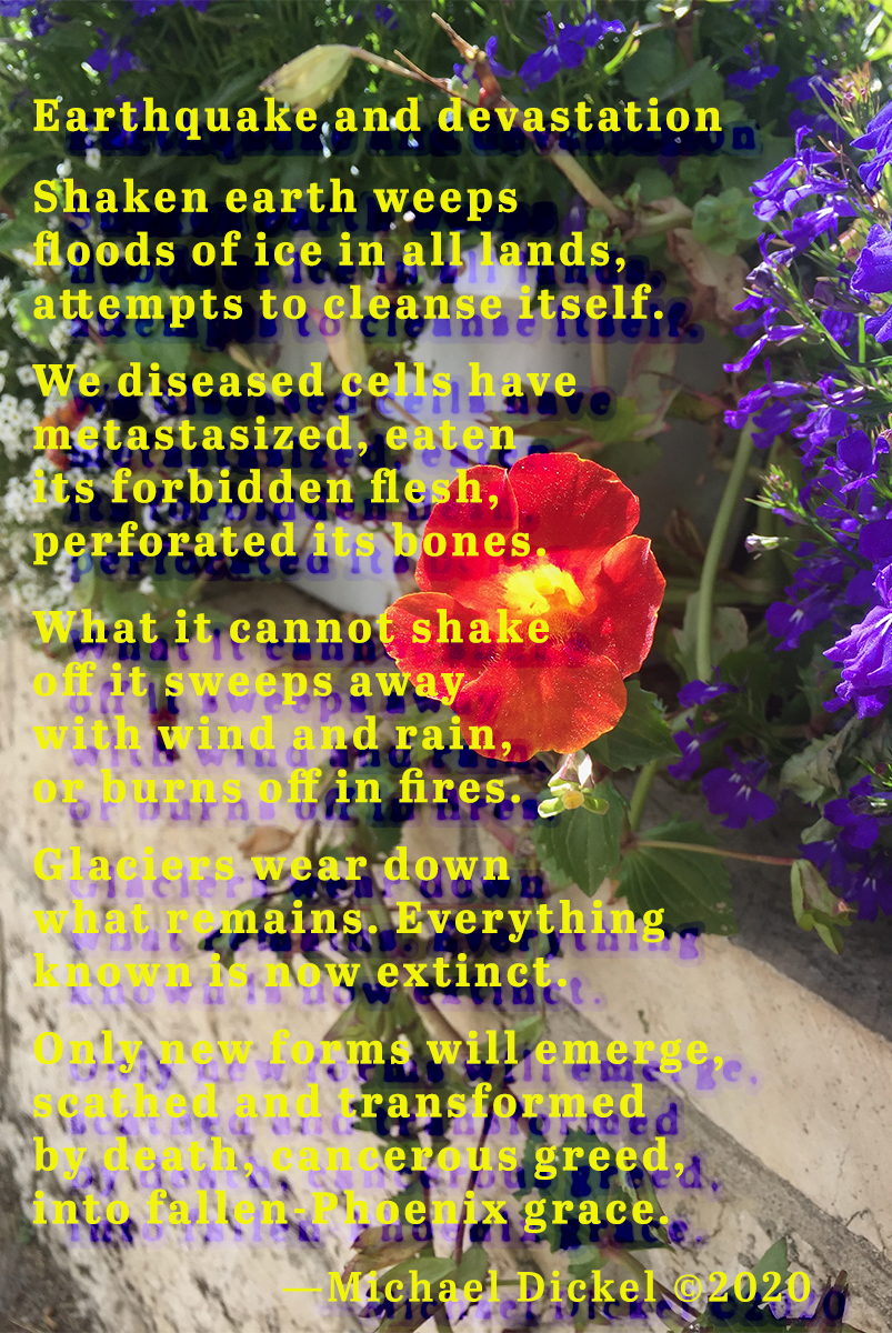 The poem Earthquake and Devastation as graphic art, with a photo of flowers in the background.
